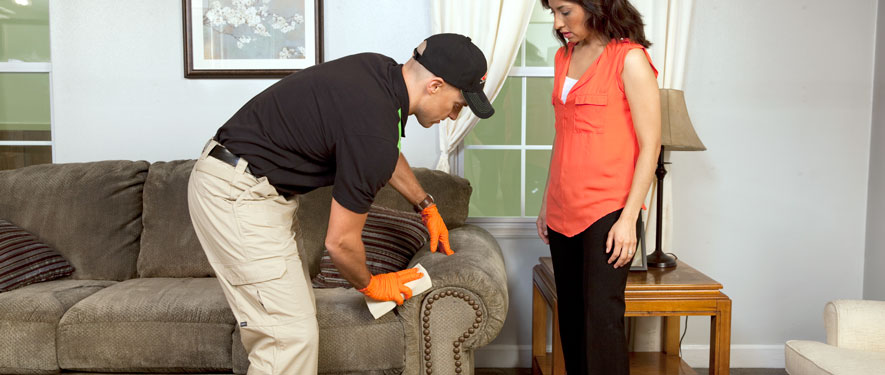 Cheviot Hills, CA carpet upholstery cleaning